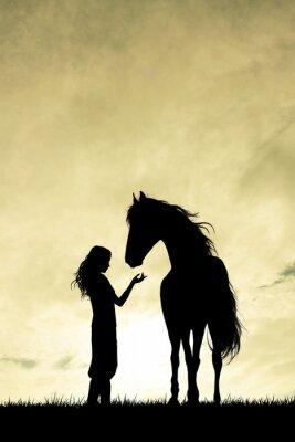 Quadro ragazza e cavallo silhouette