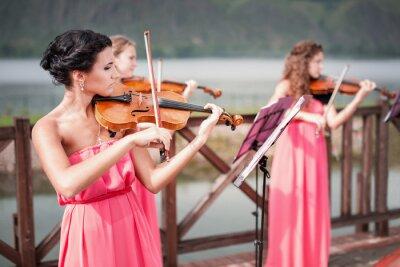 Quadro Ragazze che suona il violino
