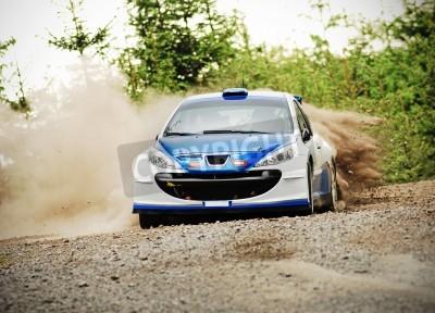 Quadro Rally car in azione