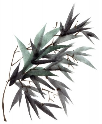 Quadro Ramo di foglie di bambù dell'acquerello