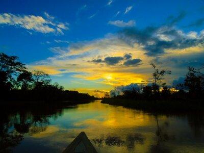Quadro Rio delle Amazzoni
