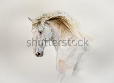 Quadro ritratto di cavallo lusitano dell'acquerello