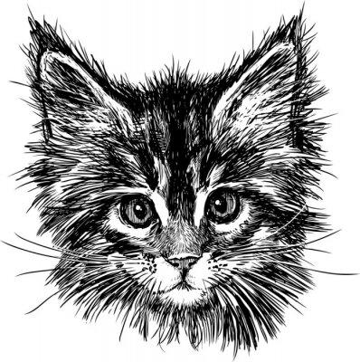 Quadro Ritratto di gatto