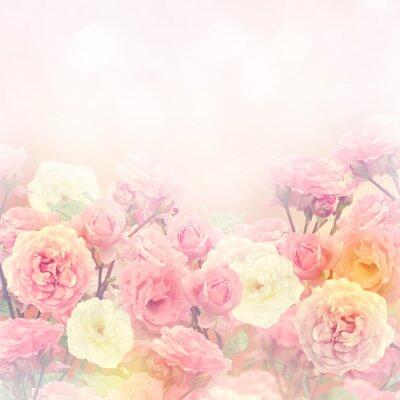 Quadro Roses Background