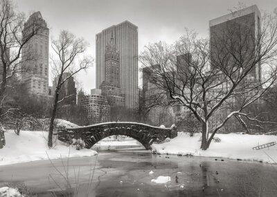 Quadro Scena di inverno a Manhattan: stagno, Gapstow Bridge e Manhatta