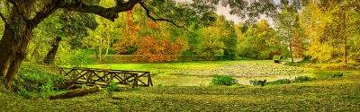 Quadro Scena di ponte in autunno - parco di Lipnik (Teketo), zona di villaggio di Nikolovo, Bulgaria. Arte moderna di pittura ad olio moderna