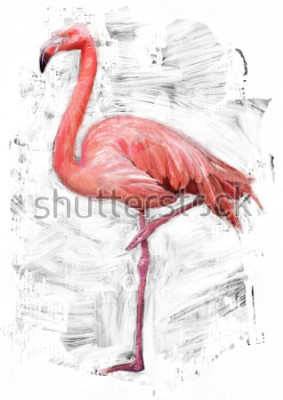 Quadro schizzo di uccello di fenicottero / pittura a colori ad olio