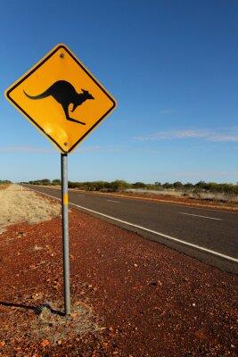 Quadro Segno Canguro in Australia del sud