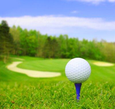 Quadro Sfera di golf sul corso