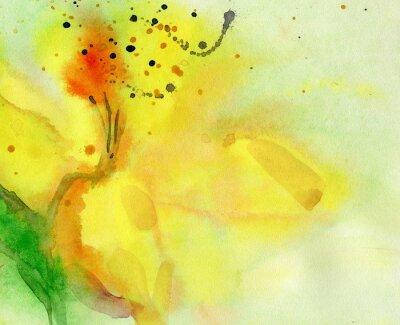 Quadro sfondo acquerello con giglio giallo. Pittura su carta.