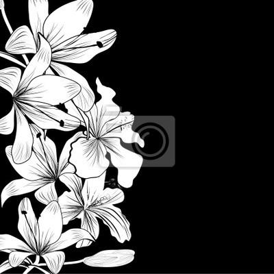 Sfondo Bianco E Nero Con Fiori Bianchi Dipinti Da Parete Quadri