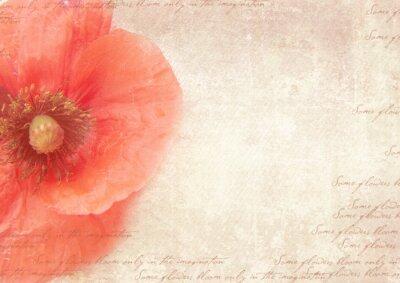 Quadro Sfondo retrò grungy con fiori di papavero. Un collage vintage in stile con fiori di papavero, sbiadito grafia sulla vecchia carta malandata. Modello di cartolina.