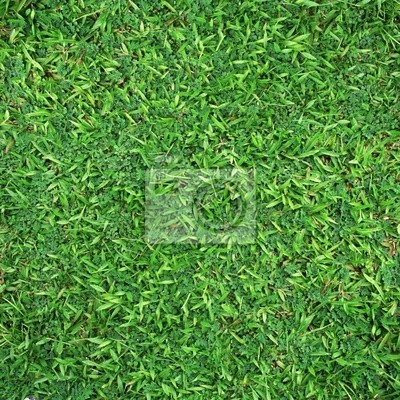 Sfondo Verde Erba Dipinti Da Parete Quadri Selvatichezza Cantiere