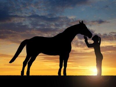 Quadro Silhouette di una ragazza che dà un bacio cavallo nel tramonto