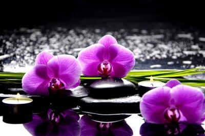 Quadro Spa still life con set di rosa orchidea e pietre riflessione