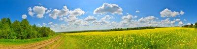 Quadro Spring flower field