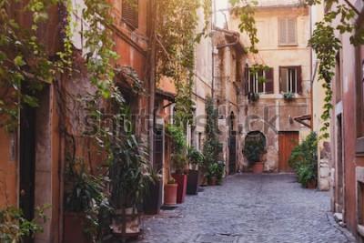 Quadro strada accogliente a Roma, Italia