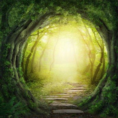 Quadro Strada nella foresta oscura