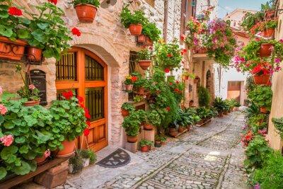 Quadro Street nel piccolo paese in Italia in estate, Umbria