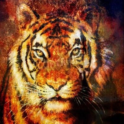 Quadro Testa di tigre, Colore di sfondo astratto, computer di collage, Contatto con gli occhi