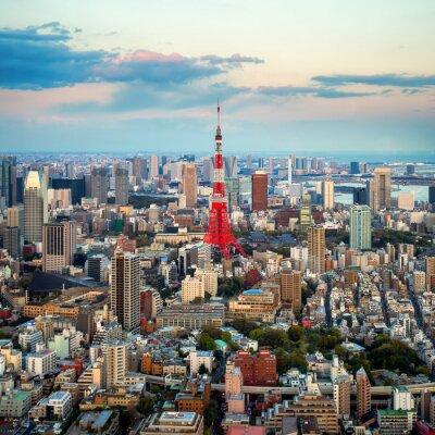 Quadro Tokio vista città visibile all'orizzonte