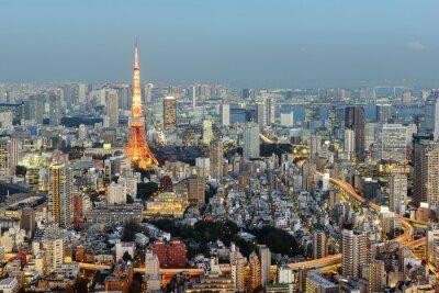 Quadro Tokyo; Giappone-gennaio 14; 2016: Veduta notturna di Tokyo Skyline con l'iconica torre di Tokyo in background.