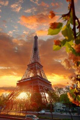 Quadro Torre Eiffel durante la bella mattina di primavera a Parigi, Francia