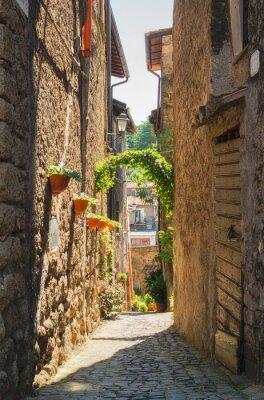 Quadro Tradizionali case italiane