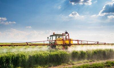 Quadro Trattore campo di grano a spruzzo