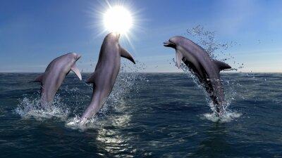 Quadro Tre delfini