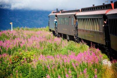 Quadro Treni Alaska