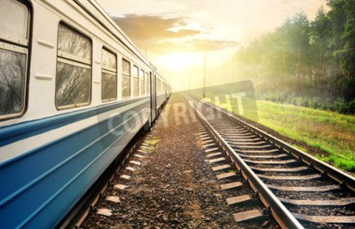 Quadro Treno in movimento attraverso la pineta al tramonto