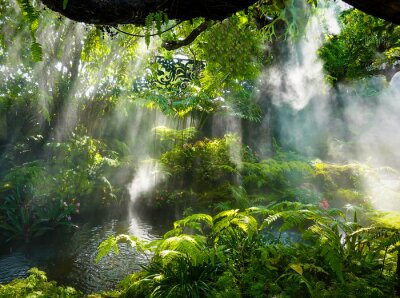 Quadro Tropical jungle with river and sun  beam  and foggy in the garden