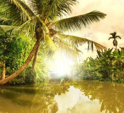Quadro Tropical river