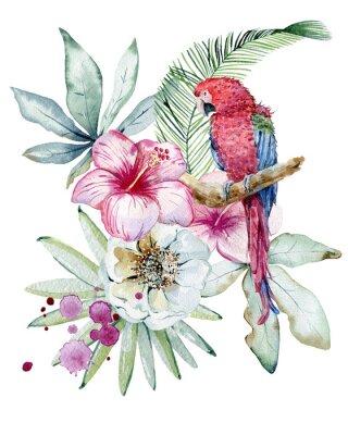 Quadro Tropical watercolor illustration