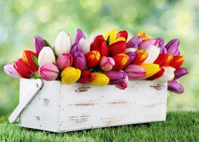 Quadro tulipani