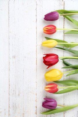 Quadro Tulipani sfondo