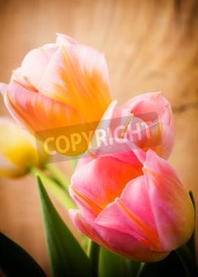 Quadro Tulipani, sfondo floreale.