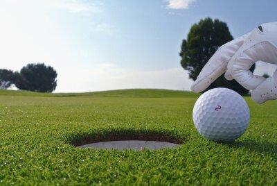 Quadro un uomo che spingere una palla in una buca da golf