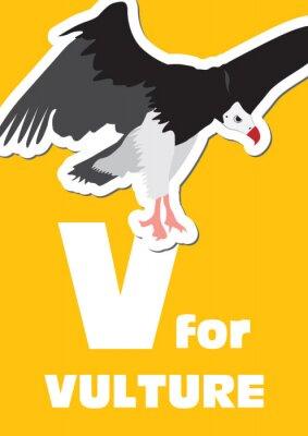 Quadro V per il Vulture, un alfabeto degli animali per i bambini