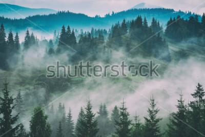 Quadro Valle di montagna carpatica nebbiosa dopo la pioggia. Stilizzazione vintage grunge.