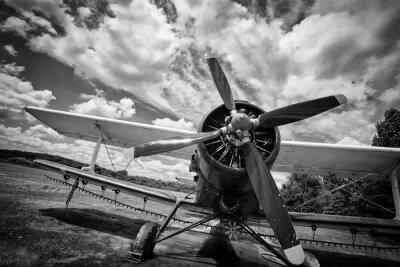 Quadro Vecchio aeroplano sul campo in bianco e nero