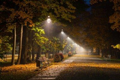 Quadro Vicolo autunnale nel parco di notte in Konstancin Jeziorna, Mazowieckie, Polonia