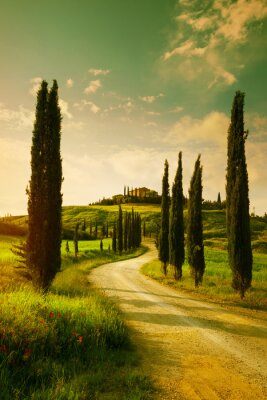 Quadro Vintage Tuscany countryside landscape