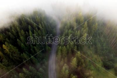 Quadro Vista estiva della strada di montagna