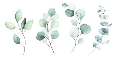 Quadro Watercolor floral illustration set - green leaf branches collection, for wedding stationary, greetings, wallpapers, fashion, background. Eucalyptus, olive, green leaves, etc.
