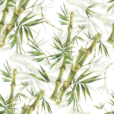 Quadro Watercolor illustration of bamboo leaves , seamless pattern on white background