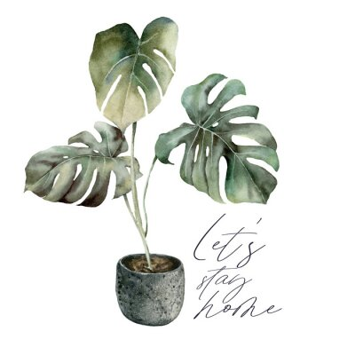 Quadro Watercolor Lets stay home card with monstera. Isolation during an epidemic. Hand painted exotic plant with pot isolated on white background. Floral illustration for design, print or background.