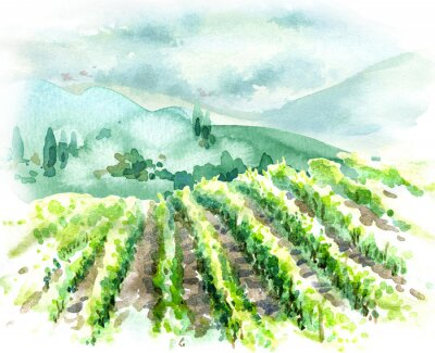 Quadro Watercolor Rural Scene with Hills, Vineyard  and Trees