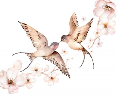 Quadro Watercolor spring flying swallows isolated and blossom flowers on white background